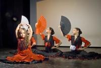 Flamenco_2