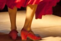 flamenco_1